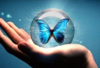 Blue Butterfly Foundation